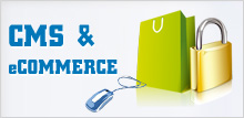 eCommerce and CMS